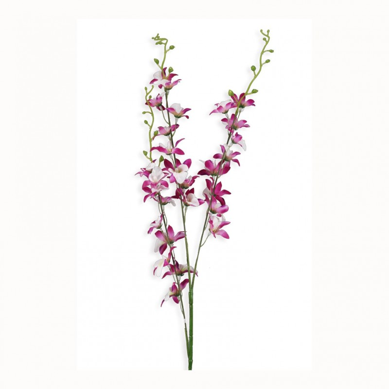 ORCHIDEA X3 - OR2,30*