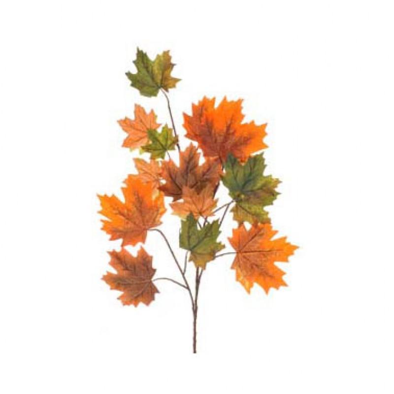 Foglia acero cm60 5 au 3 35 2pe310 autunno for Foglia acero