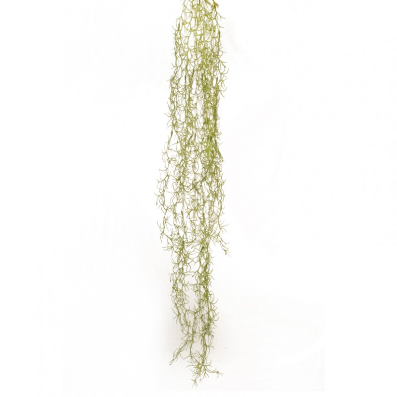 TILLANDSIA CADENTE CM 120 - CD5,50*